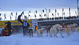 Yukon Quest (c) Sui Kings